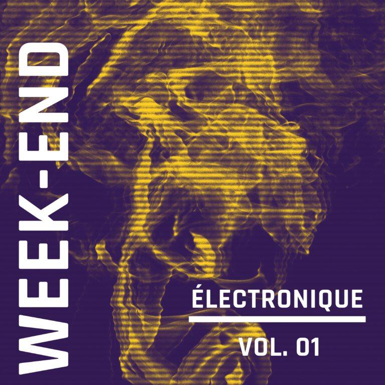 Week-End Electronique, Vol. 1
